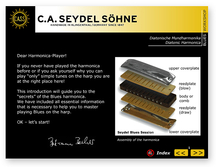 Blues Beginner ohne Harmonika