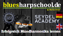 bluesharpschool.de