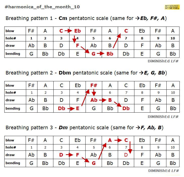 tremolo harmonica lessons for beginners pdf